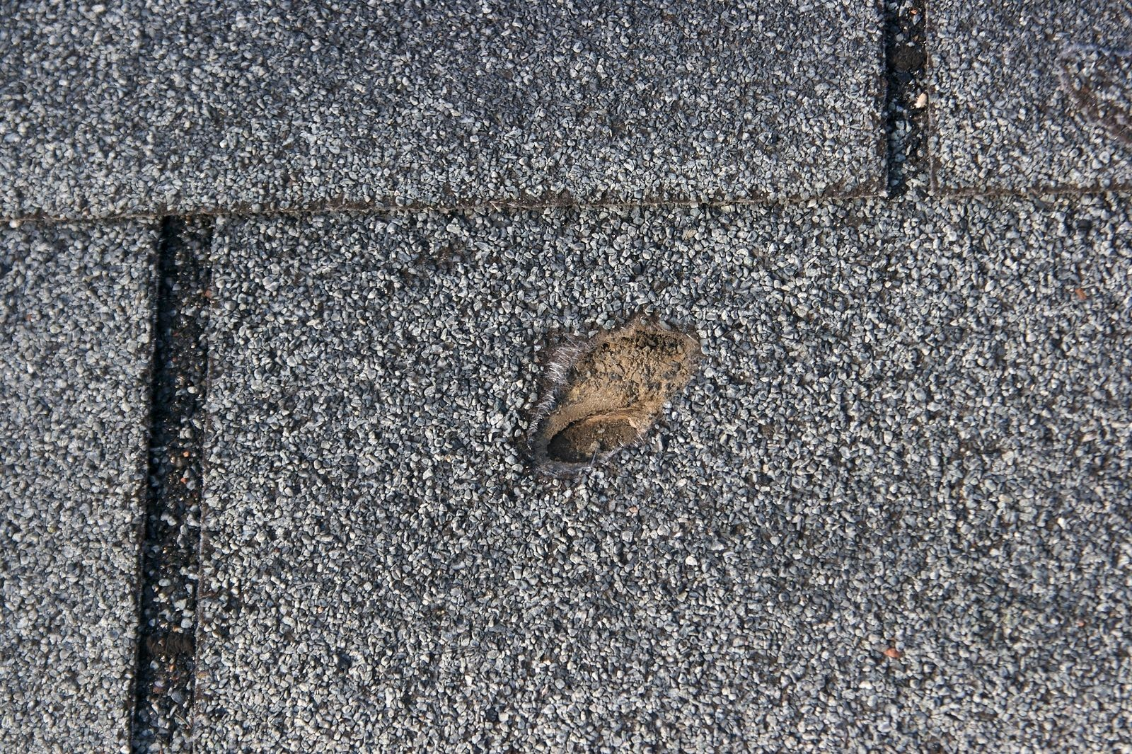 Certain Roof Blisters Might Cause Problems, Roofing Experts State